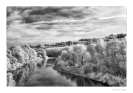 Tanaro il fiume dei vini-4