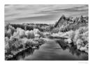 Tanaro il fiume dei vini-5