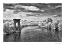 Tanaro il fiume dei vini-7